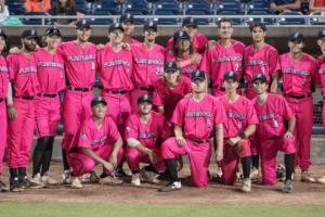 Flamingos announce 2022 ticket plan information